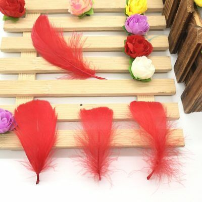 100 Pcs/Lot Natural 4-7cm/1-2 Inch Small Floating Goose Feather for Diy Carnival 4