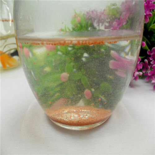 Popular 1x 100g Brine Shrimp Eggs Artemia Ocean Nutrition Fish Food Feeding TSUS