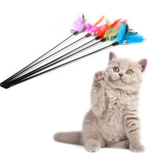 Multi Pet Cat Kitten Toy Mouse Teaser Wand Feather Rod Cat Play Deko 2