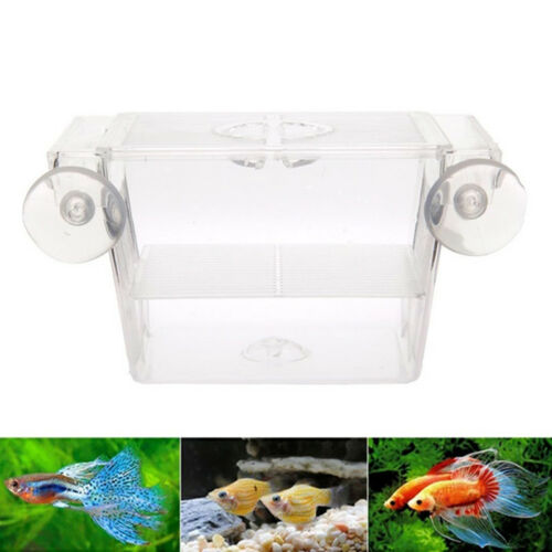 1Pcs Aquarium Fish Tank Double Incubator Breeding Breeder Isolation Hatchery Hot