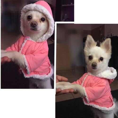 Winter Dog Coats Pet Cat Puppy Chihuahua Clothes Hoodie Warm  Dog Clothing Z 2