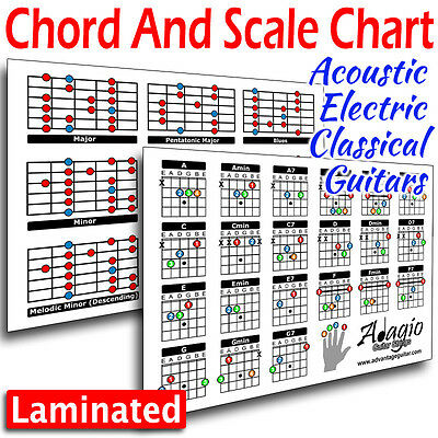 ✯✯ Colourful 2-Side Chord & Scale Chart Tool For Guitar Lessons Easy Practice ✯✯ 2