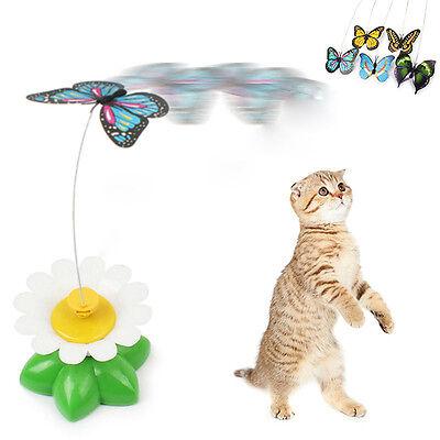 Jouet Pour Chat Chaton Electrique Papillon Fleur Rotation Animal Jeu Cat Teaser 2