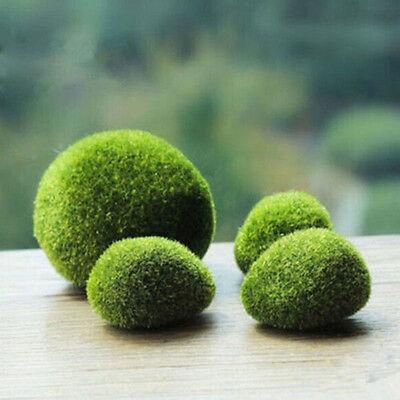 2PCs Green Moss Balls Aquarium Plants Java Shrimps nano Fish Tank Home New 2