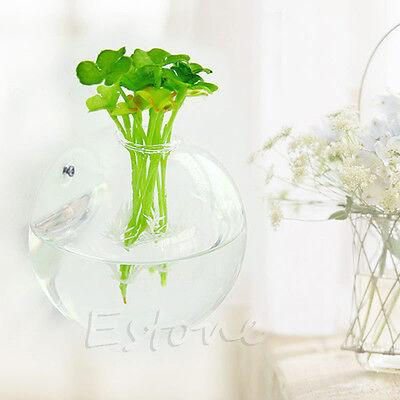 Wall Hang Glass Flower Planter Vase Terrarium Container Home Garden