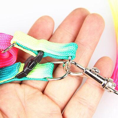 Pet Small Dog Puppy Cat Rabbit Kitten Nylon Harness Collar Leash Lead Adjustable