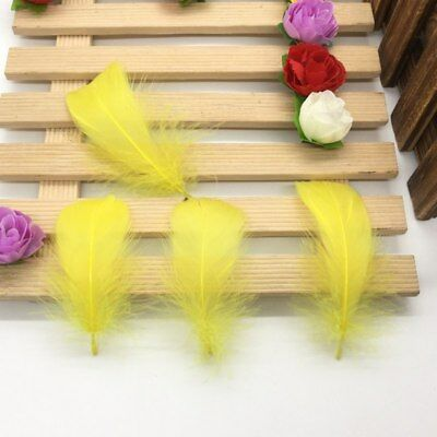 100 Pcs/Lot Natural 4-7cm/1-2 Inch Small Floating Goose Feather for Diy Carnival 9