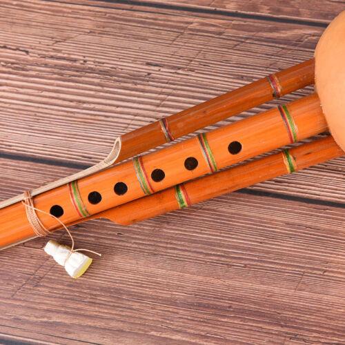 profeesional chinese hulusi gourd cucurbit flute c key ethnic instrument GVJB