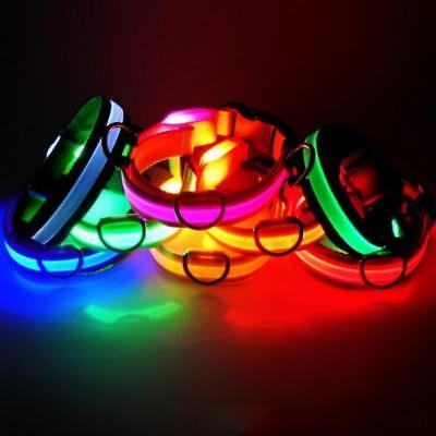 USB Rechargable LED Dog Pet Collar Flashing Luminous Safety Light Up Nylon UK 4