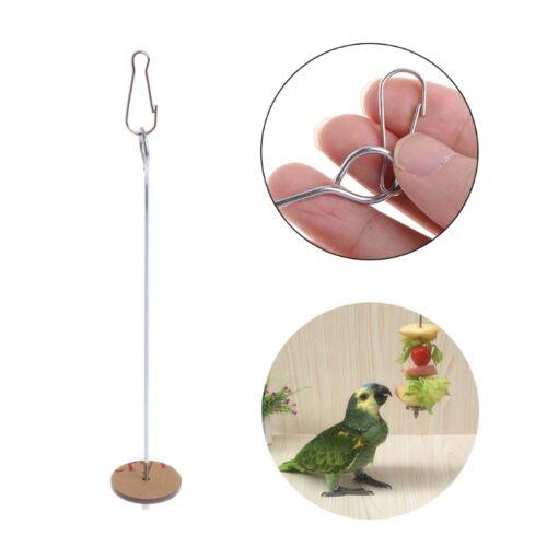 Parrots Birds Food Holder Support Stainless Steel Fruit Spear Stick Meat Skewer 2