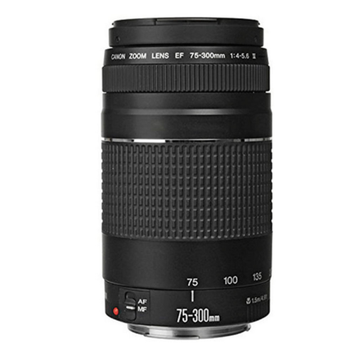 Canon EOS Rebel T7 24.1MP DSLR Camera + 18-55mm + 75-300mm Lens Accessory Bundle 4