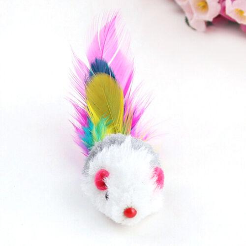 5x Neuf Faux Souris Plume Chat Chien Animal Jouet à Gratter Jouer  Accessoires 7