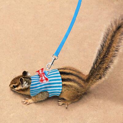 Pet Leash Small Animal Leash Ferret Harness Dog Hamster Squirrel Rat