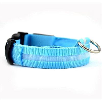 USB Rechargeable LED Dog Pet Collar Flashing Luminous Adjustable Safety Light KY 12