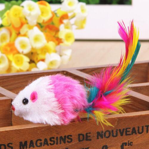 5x Neuf Faux Souris Plume Chat Chien Animal Jouet à Gratter Jouer  Accessoires 5