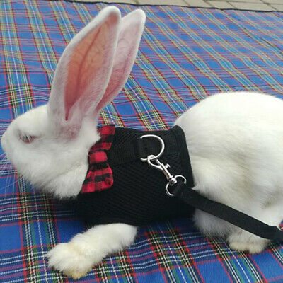 Large Black/Red Adjustable Soft Harness with Elastic Leash for Rabbit Bunny 4