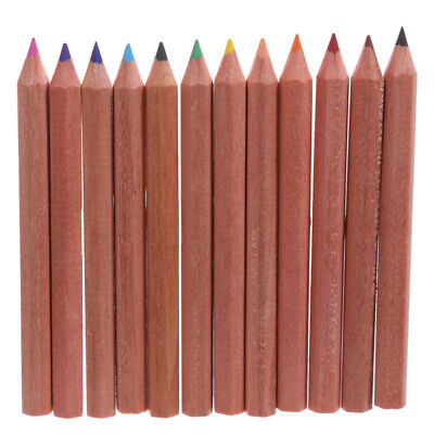12 Pencils For Your Adult Colouring Book - Tube Case Set Design Mindful Travel 2