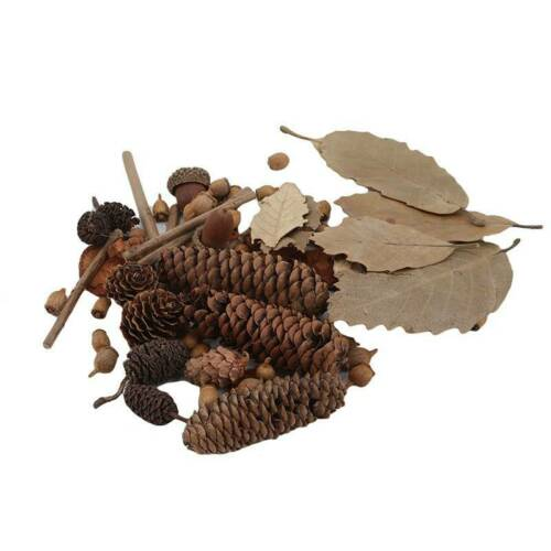 Decorative Natural Pine Cone Dried Pinecones DIY Home Vase Decoration D 7