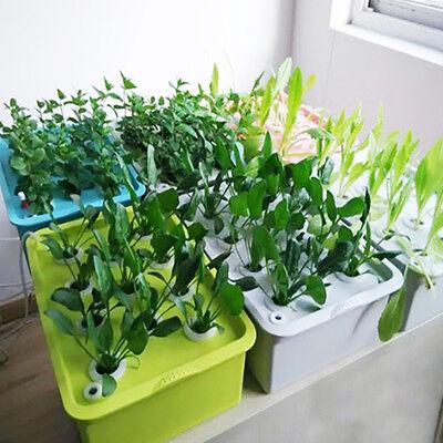 6 Löcher Pflanze Baustelle hydroponischen System wachsen Set Bubble für drinnen