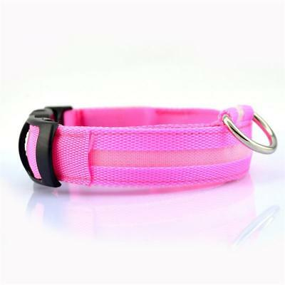 USB Rechargeable LED Dog Pet Collar Flashing Luminous Adjustable Safety Light KY 11