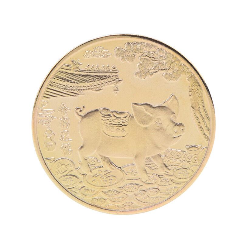 Année du cochon Plaqué or Souvenir du zodiaque chinois Pièce de monnaie Collecti