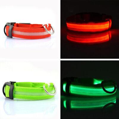 USB Rechargeable LED Dog Pet Collar Flashing Luminous Adjustable Safety Light KY 3