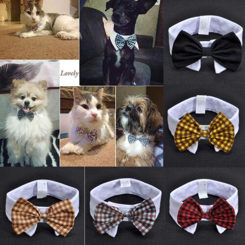 Fashion Dog Cat Pet Puppy Kitten Toy Bow Tie Necktie Collar Clothes Adorable 2