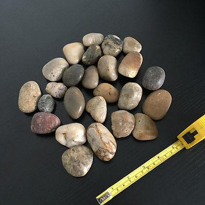 1kg Large Assorted Browns Natural Stones Pebbles Aquarium Decoration Garden Vase 8