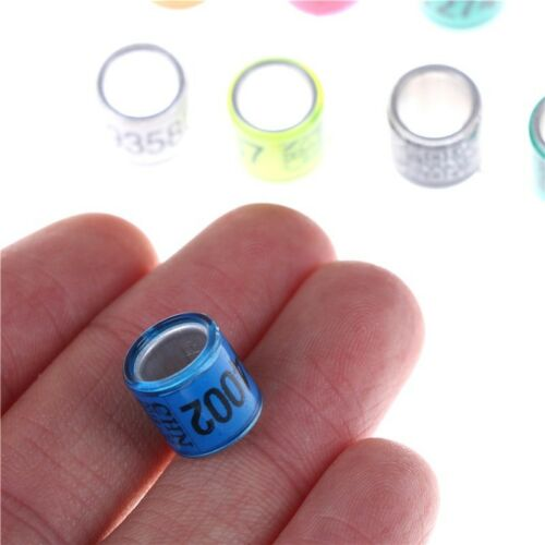 20PCS BIRD LEG Rings Bands for Pigeon Parrot Finch Canary Hatch Poultry US