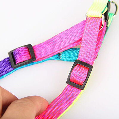 1PCS Adjustable Pet Dog Puppy Cat Rabbit Kitten Nylon Harness Collar Leash Lead