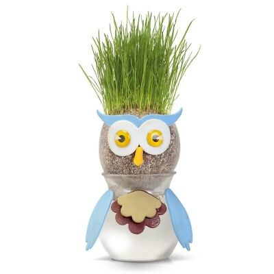22664 FUN WATER GROWTH SCIENCE GARDENING HAIRDRESSING NATURE TOY OWL GRASSHEAD