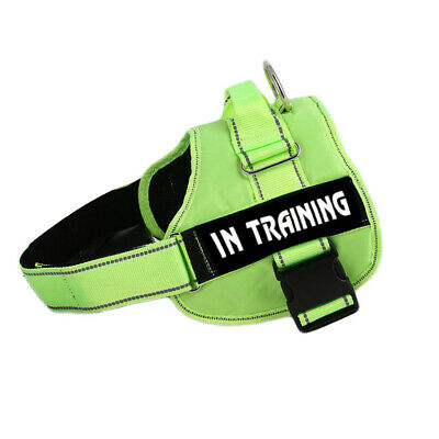 ESA Dog Harness No Pull Collar Patch Emotional Support Therapy Pet Service Vest 3