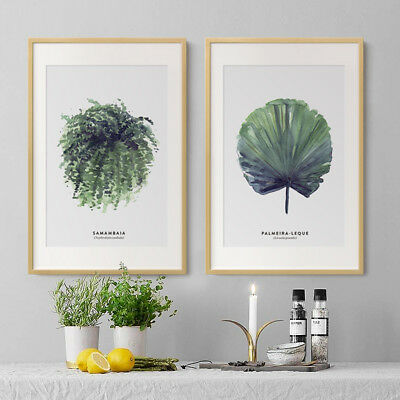 Watercolor Plants Leaves Canvas Art Vintage Poster Prints Home Wall Decoration 4