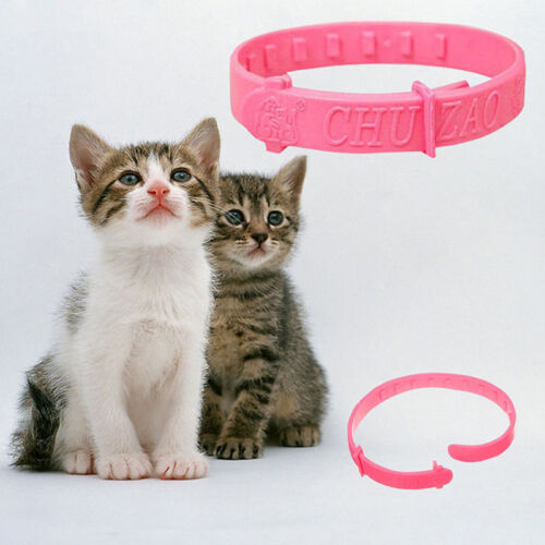 1pcs Pro FLEA COLLAR Pet Cat Kitten Puppy Dog Adjustable Anti Tick Control
