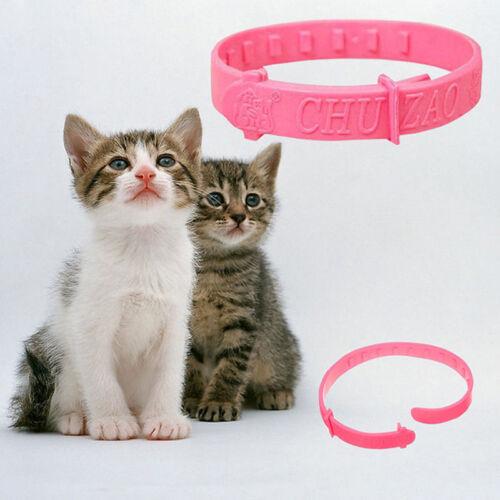 1pcs Pro FLEA COLLAR Pet Cat Kitten Puppy Dog Adjustable Anti Tick Pest Pop
