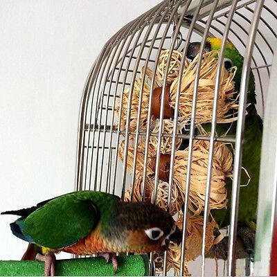 Mascota Pájaro Mordisco para Morder Juguete Periquito Colgante Columpio Cascabel