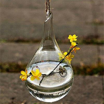 Glas hängende Vase Blumen Pflanzer Behälter Topf Hochzeits Teelicht HalterDDE