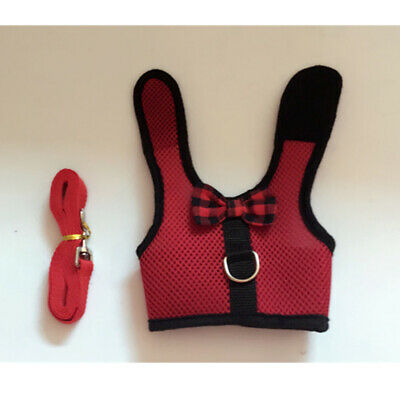 Large Black/Red Adjustable Soft Harness with Elastic Leash for Rabbit Bunny 6