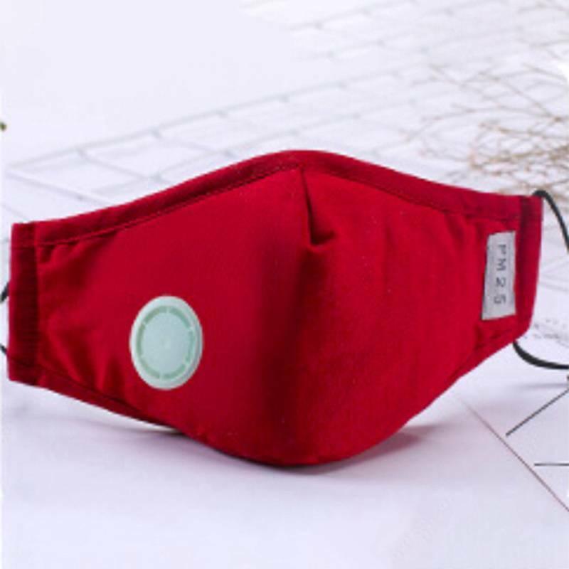 Filtri anti polvere +20 per respiratore valvolato omologati KN95 10