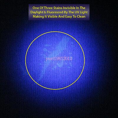 8 Of 10 Promotional 12 LED Black Light UV Flashlight For Detecting Pet Dog  Urine Stains