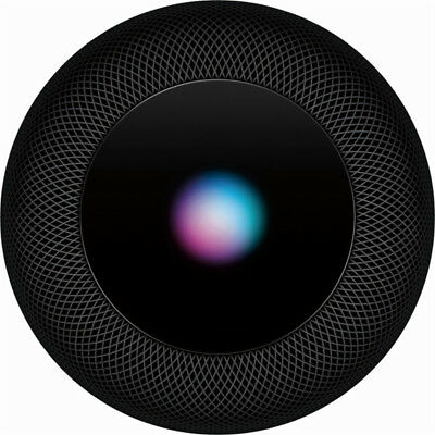 Apple HomePod Space Gray MQHW2LL/A Digital Media Streamer Siri 2