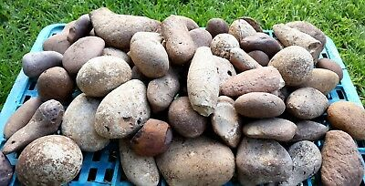 1 Kg Round Natural Flint Chert Stones for Knapping and Decoration from Holy Land