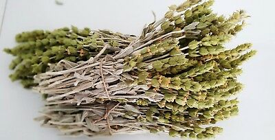 Griechischer Bergtee Sideritis Scardica Bio | 180g | Ernte 19 | Premium Qualität 10