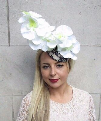 Navy Blue White Cream Orchid Flower Fascinator Hat Hair Clip Races Wedding 3803 3