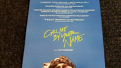 Call Me By Your Name poster  - Armie Hammer, Timothee Chalamet  - 11 x 17 inches 4