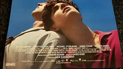 Call Me By Your Name poster  - Armie Hammer, Timothee Chalamet  - 11 x 17 inches 3