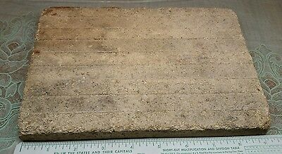Early Architectural Floor Encaustic Tile Brown White textured  Glazed Teri cotta 5
