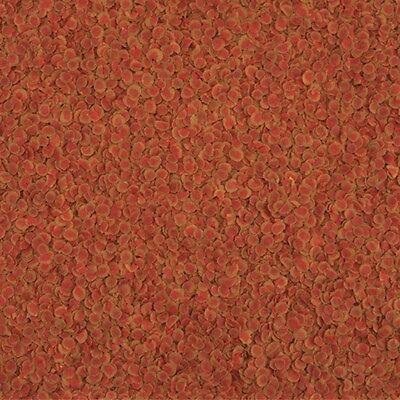 TetraPro Colour Crisp 10 Liter Premium Fischfutter steigert die Farbenpracht 2 • EUR 46,90