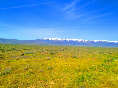 Rare 40 Acre Eureka County Nevada Ranch~Adjoins Blm Land  Cash Sale! No Reserve! 4