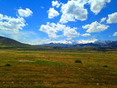 Rare 80 Acre Elko Nevada Ranch Near Utah/Idaho Border!  Cash Sale!  No Reserve! 4